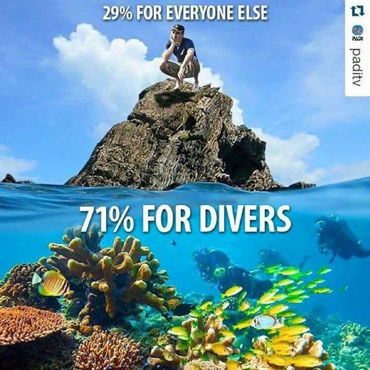 de wereld onder water